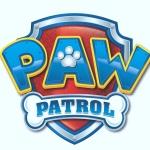 festa tema Paw Patrol su PalaParty