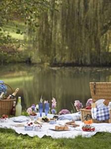 coordinato tavola picnic
