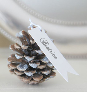 segnaposti natalizi su palaparty